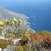 Africa, South Africa, Cape Town. Coastal view from Table Mountain.