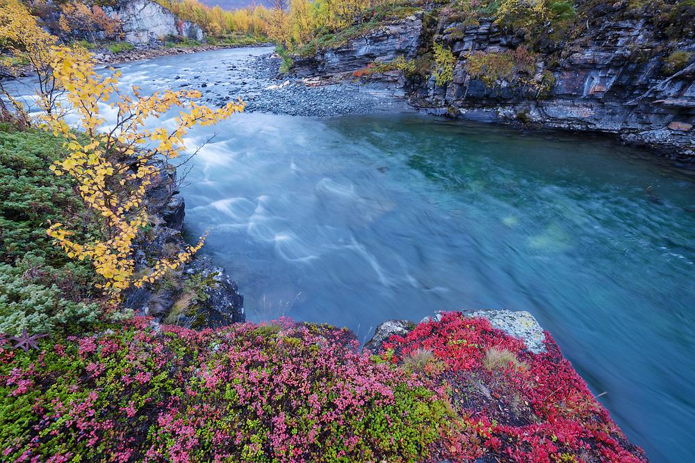 Abiskojohka river canyon, Abisko National Park, Norrbotten, Lapland, Sweden