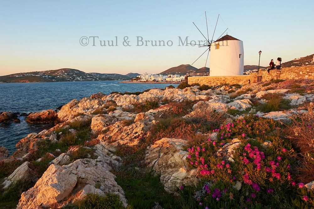Grèce, Les Cyclades, Ile de Paros, Parikia (Hora), moulin pres du port // Greece, Cyclades, Paros island, Parikia (Hora), windmill near harbour