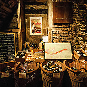Winetasting at Dufouleur Pere et Fils<br /> Nuits-St-Georges, Bourgogne (Burgundy)