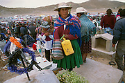 Amerindian woman in hat chews coca leaves on top of a grave during Todos Santos or All Saints Day in Oruro, Bolivia. In the Altiplano of Bolivia, it is customary that a family, in which there has been a death within the last three years, call down the spirit for a three day visit, after which they go to the graveyard to decorate the grave and take farewell. At Todos Santos, the graveyards are therefore crowded with people, who drink alcohol and chew coca leaves while taking farewell of their dead family members.