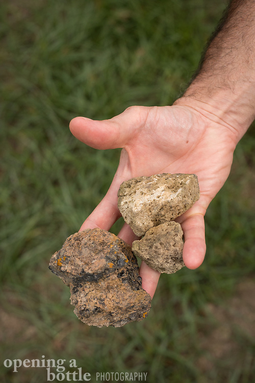 Green volcanic rocks — an indicator of Pantelleria's terroir — held in the hand of a winemaker.