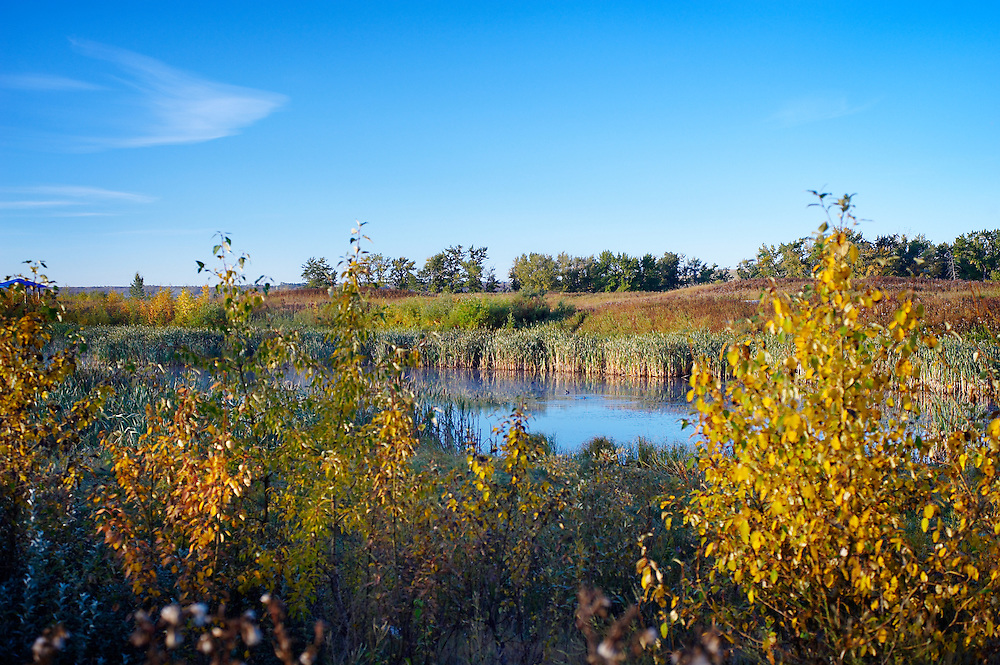Landscape photography of Bow River in fall, Calgary, Alberta.
