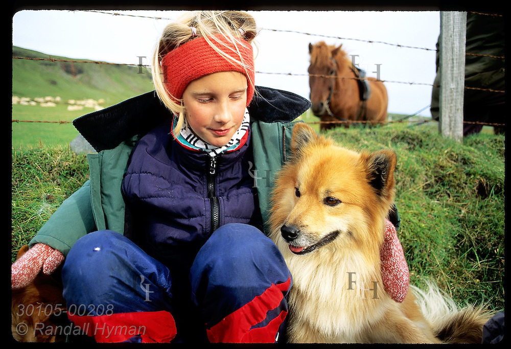 Girl sits with purebred Icelandic dog as horse watches from pasture during roundup; Klaustur Iceland