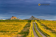 Two track road to Finger Buttes in Carter County, Montana, USA