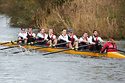 Crew: 196   Op 8+ BAND-4   Bristol, University of, Boat Club   UBR-CSEH-2<br /> <br /> Wallingford Head 2017<br /> <br /> To purchase this photo, or to see pricing information for Prints and Downloads, click the blue 'Add to Cart' button at the top-right of the page.