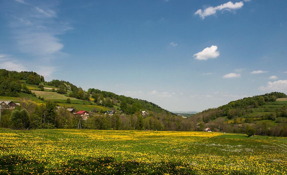Krajobraz Małopolski