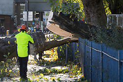 © licensed to London News Pictures. London, UK 28/10/2013. A fallen tree which hit a double decker bus being removed from the high street in Turnpike Lane after St Jude's Day Storm on Monday, 28 October 2013. Photo credit: Tolga Akmen/LNP