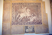 Mosaic on wall Archaeological museum, Rhodes, Greece