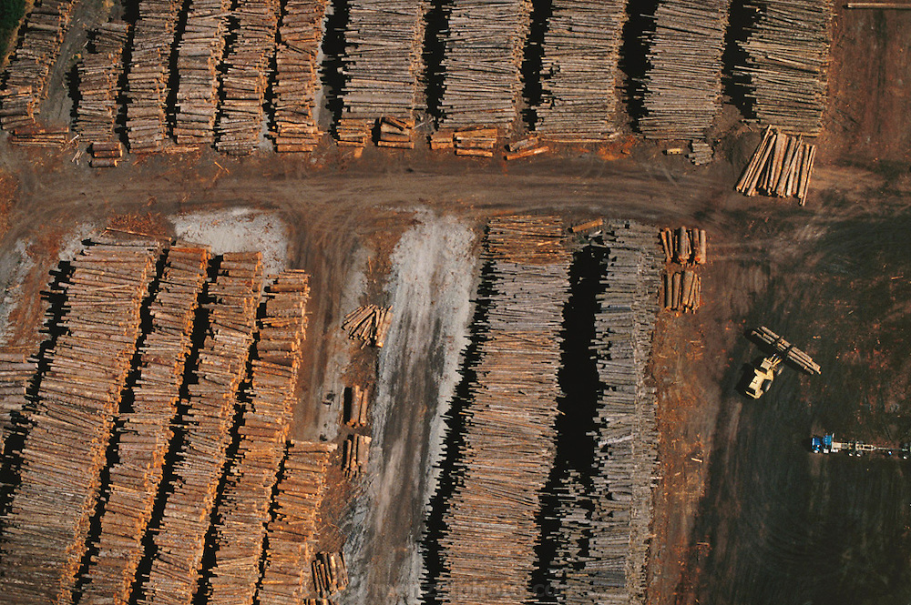 Aerial of the log yard at Blue Lake Timber Company, Humboldt County, California, USA.