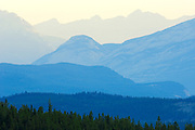 Front ranges of the Canadian Rockies from the Cavell Road. <br /> Jasper National Park<br /> Alberta<br /> Canada