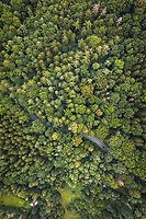 Abstract aerial view of car on winding road trough forrest in National Park Sächsische Schweiz, Germany.