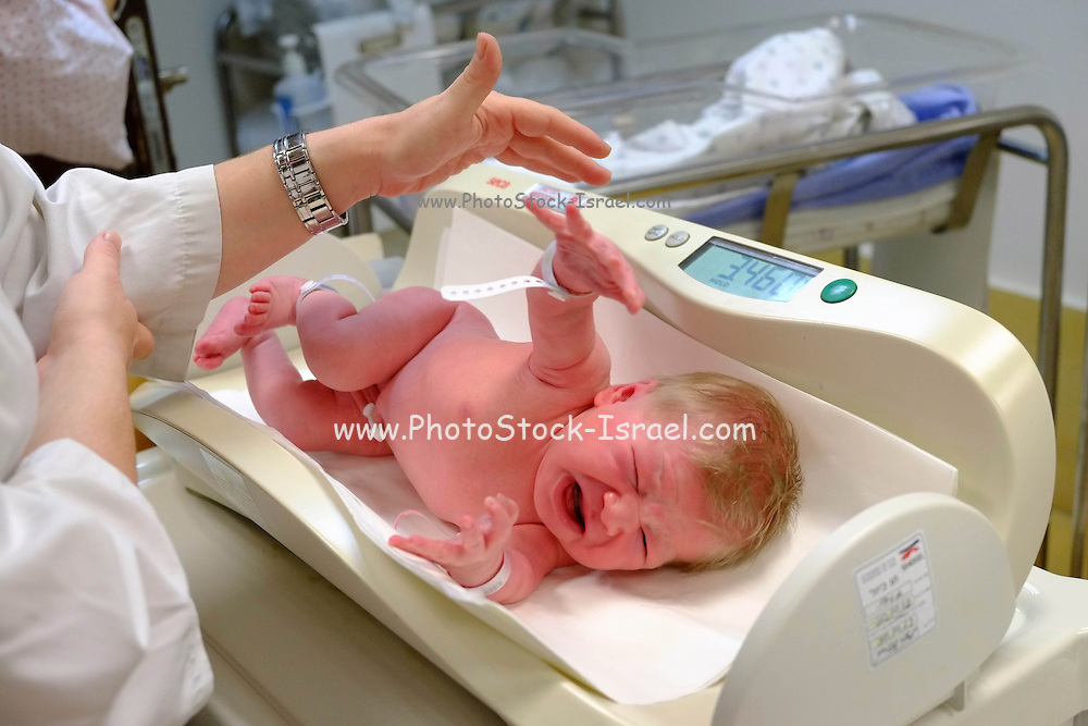 A crying baby girl is being weighed at the hospital after birth.