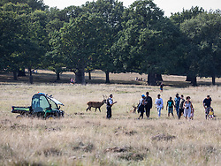 "© Licensed to London News Pictures. 20/09/2020. London, UK. Police speak to a group of people as they patrol Richmond Park in South West London in a 4x4 vehicle on the first weekend of the ""Rule of Six"" as members of the public enjoy a picnic and walk in the fine weather. Gatherings of over six people have been banned by the Government after a spike in coronavirus cases. Health Minister Matt Hancock has announced that people with coronavirus who don't self-isolate could be fined up to £10,000 and Prime Minister Boris Johnson has said that the UK was heading for a second wave.  Photo credit: Alex Lentati/LNP"