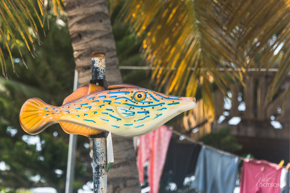 The streets of San Pedro are alive with signs of the fishing trade. Each street has its own type of fish to mark the cross streets.