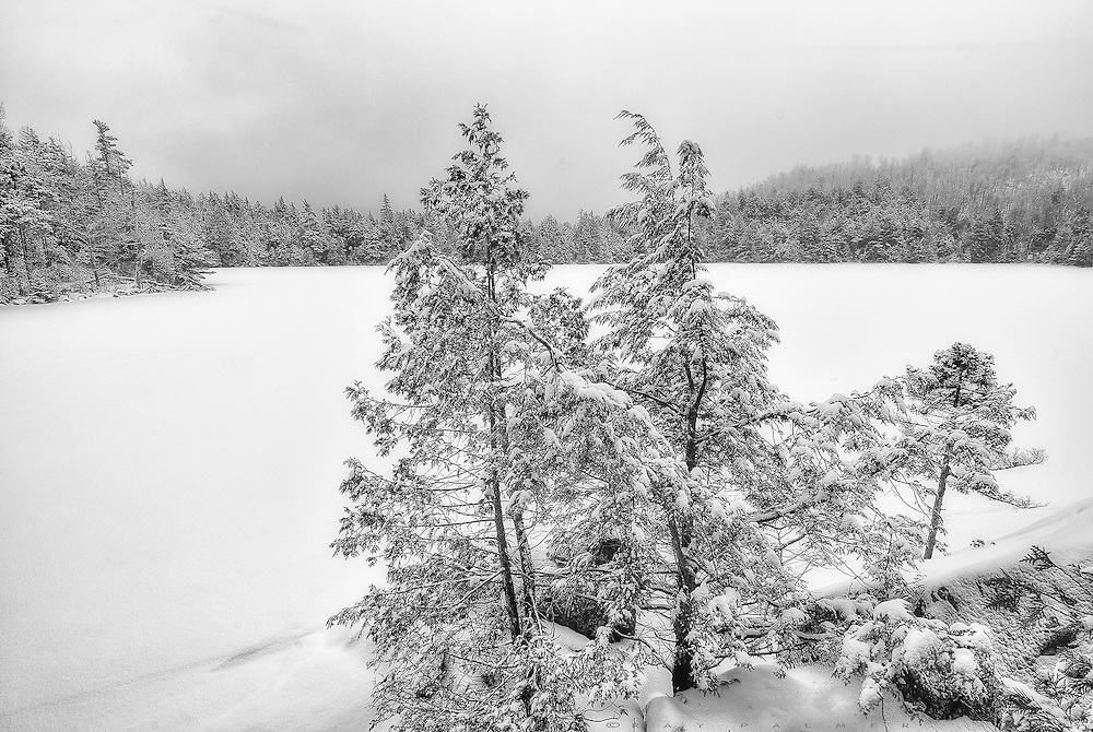 Snowfall, Owens Pond, Adirondacks, NY.  The forecast lived up to it's word:  snow.  Not much, just squalls passing through the range, clearing in between by about enough to see the next one coming.  I hiked up to Owens Pond and found it unspoiled.  No one had been here for some time, the lake free of  human tracks, the trees detailed in fresh white.  The expanse was a blank page, yet to be written on, a new start with every snowfall.  I look around at the brightness of an incoming cloud, and wonder how long I can stay here, wishing on a white world.  It is doomed.   I had been dreaming for some time now, and I knew that each coating disappears, each hope ends up spoiled. How many times can hope be revived? To come true, wishes must be shared.  I moved on, wondering how long it would take to fill in my tracks.