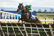 """Horse Racing - Fairyhouse Easter Festival, Monday 28th March 2016<br /> JP McManus owned Slow Motion with M. Walsh in the saddle clears the last and goes on to win the """"Live on at the Races""""<br /> Photo: David Mullen /www.cyberimages.net / 2016"""