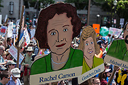 Rachel Carson held high at the Climate March.