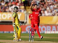 Cricket Season 2013