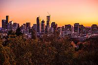 Seattle Skyline (Autumn Gold)