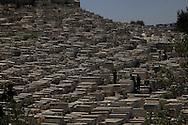 The Jewish Cemetery on the Mount of Olives, Jesusalem<br /> Photo by Dennis Brack