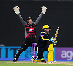 Ryan Davies of Somerset appeals for the wicket of Liam Dawson.  - Mandatory by-line: Alex Davidson/JMP - 02/08/2016 - CRICKET - The Ageas Bowl - Southampton, United Kingdom - Hampshire v Somerset - Royal London One Day