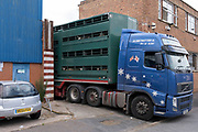Livestock being delivered to an inner city slaughterhouse Birmingham Halal Abattoir, trading as Pak Mecca Meats at old industrial building in Deritend area near the city centre on 3rd August 2020 in Birmingham, United Kingdom. Pak Mecca Meats, currently operates from Bishop Street and nearby warehouses and has caused controversy due to the environmental impact on local residents.