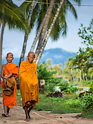 """20 JUNE 2016 - DON KHONE, CHAMPASAK, LAOS: Buddhist monks from Wat Khone Nua on their morning alms' rounds, called the """"tak bat"""" in Don Khone village on Don Khone Island. Don Khone Island, one of the larger islands in the 4,000 Islands chain on the Mekong River in southern Laos. The island has become a backpacker hot spot, there are lots of guest houses and small restaurants on the north end of the island.     PHOTO BY JACK KURTZ"""