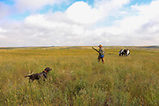 John Zeman, approaches his locked up German shorthair Willy during a Montana horseback grouse hunt.