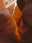 Stick naturally balanced between walls of Peek-a-boo Gulch, Grand Staircase-Escalante National Monument, Utah.