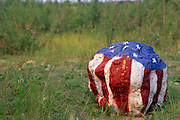 Alaska, Ester. US flag painted on rock. Summer.
