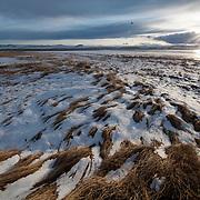 Freezeout Lake Wildlife Management Area, Montana.