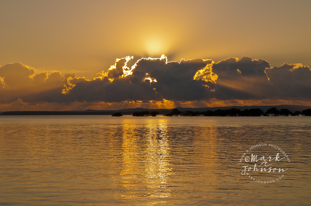 Sunrise & mangroves in Moreton Bay, Queensland, Australia