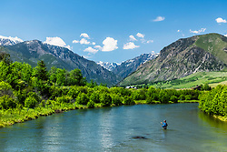 Fly-fisherman throwing a long cast tight loop on the East Rosebud River in the Beartooth Mountains of Southwest Montana.