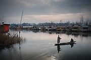 Winter scene on Dal Lake, Kashmir, India