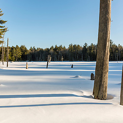 A frozen beaver pond in Epping, New Hampshire.