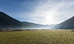THEMENBILD - von weißen Weihnachten kann man in Tirol derzeit nur träumen. Das Bild zeigt grüne Wiesen trotz der anhaltenden Kälte, aufgenommen am 17.12.2016 in Uderns // white Christmas will pretty sure only be a dream this year in Tyrol. The picture shows green meadows despite the persistent cold, Austria on 2016/12/17. EXPA Pictures © 2016, PhotoCredit: EXPA/ Jakob Gruber