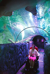 Wheelchair user with cerebral palsy at the Sea Life Centre, Blackpool.