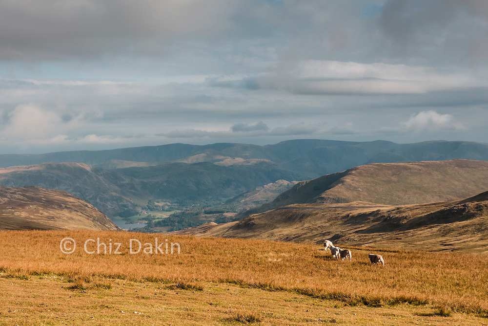 View down the Glencoyne valley to the head of Ullswater from Stybarrow Dodd