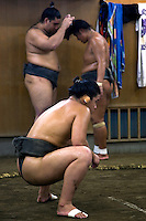"""Sumo """"keiko"""" or practice at a sumo stable in Tokyo. Sumo is a competitive sport in Japan where two wrestlers attempt to force one another out of a circular ring.  The Japanese consider sumo a kind of martial art and the sumo tradition is very ancient. Even today the sport includes many ritual elements, such as the use of salt for purification, harking back to the days when sumo was used in the Shinto religion."""