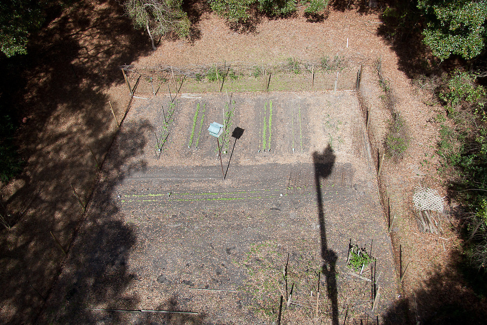 The fenced, 50x50 vegetable garden at 33 Pine View Drive has amazing, organic soil, thanks to 30 years of tending.