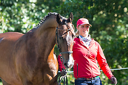 Christoph Sandmann, (GER), Amico 34, Asztor, Scicco, Variant, Wierd - Horse Inspection Driving - Alltech FEI World Equestrian Games™ 2014 - Normandy, France.<br /> © Hippo Foto Team - Leanjo de Koster<br /> 25/06/14