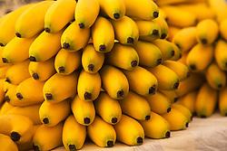 detail of yellow bananas