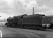CIE Steam Locomotive 800 - The 'Maedhbh' .19/05/1958.