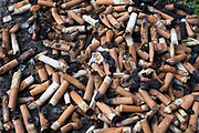 A pile of cigarette butts. The most common method of smoking today is through cigarettes. It has been suggested that smoking-related disease kills one half of all long term smokers but these diseases may also be contracted by non-smokers. A 2007 report states that about 4.9 million people worldwide each year die as a result of smoking.