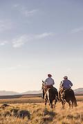 Gauchos on horseback cross the plain, Lanin volcano behind in the distance, Estancia Huechahue, Patagonia, Argentina, South America