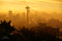 City in the Mists (Seattle) / Limited Edition