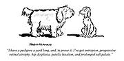 """I have a pedigree a yard long, and, to prove it, I've got entropion, progressive retinal atrophy, hip dysplasia, patella luxation, and prolonged soft palate."""