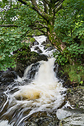 Randale Beck stream, near its entry to Haweswater Reservoir, in Lake District National Park, Cumbria county, England, United Kingdom, Europe. Today, day 6 of 14 trekking Coast to Coast, we went from Ullswater to Kirkby Stephen. Hiking 10 miles with 2600 feet cumulative gain in the fells of Lakeland brought us over the highest Roman road in England, then down to the lakeshore of Haweswater. Overnight in Brownber Hall Country House near Kirkby Stephen. [This image, commissioned by Wilderness Travel, is not available to any other agency providing group travel in the UK, but may otherwise be licensable from Tom Dempsey – please inquire at PhotoSeek.com.]