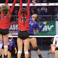 Miyamura's Mariah Livingston (14) goes up for a spike in their match against Portales Friday morning at the Santa Ana Star Center in the NMAA Class 4A State Volleyball tournament in Rio Rancho.